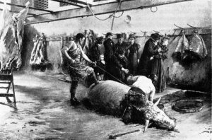 Les buveurs de sang, Joseph-Ferdinand Gueldry (1898)